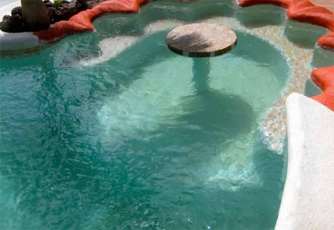 Photo 9 du Vue de la piscine de la villa à louer