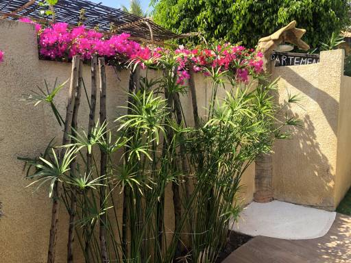 Photo 12 du La villa vue de l'extérieure