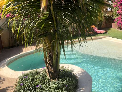 Photo 10 du Vue de la piscine de la villa à louer