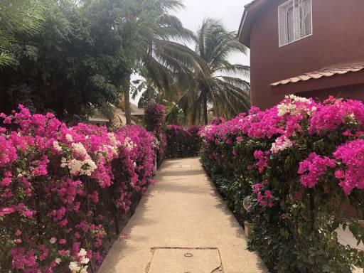 Photo 12 du La résidence - Les jardins de Popenguine à Saly, Sénégal