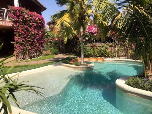 Photo 11 du Vue de la piscine de la villa à louer